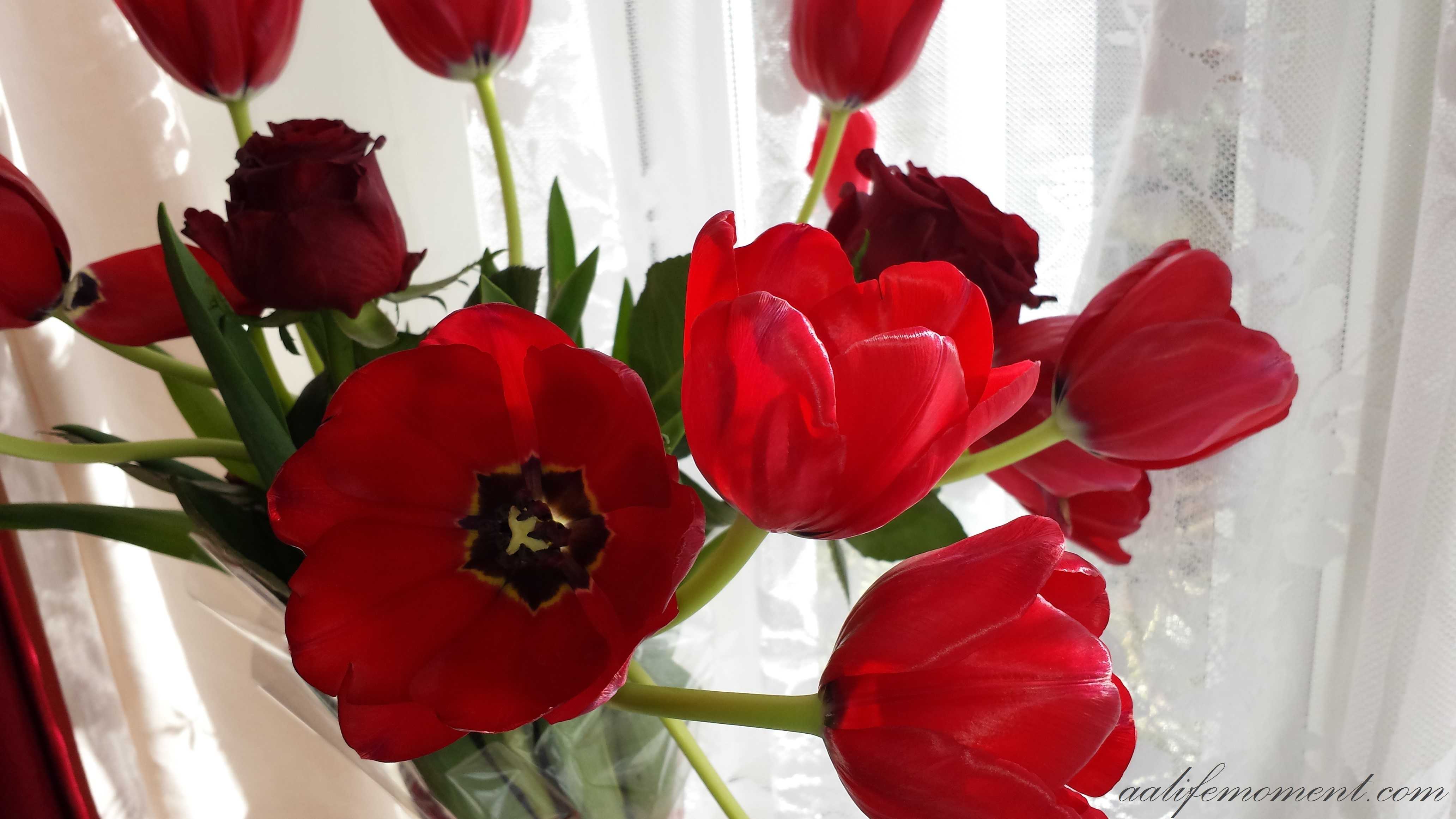 San Valentino flowers
