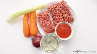 Spaghetti Bolognese the only Ingredients