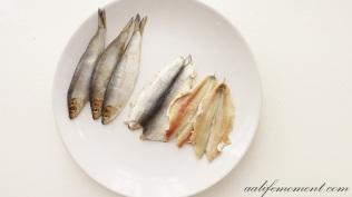 Sprats fish